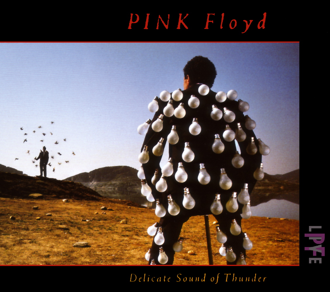 jaquettes2/pink-floyd_delicate-sound-of-thunder.jpg