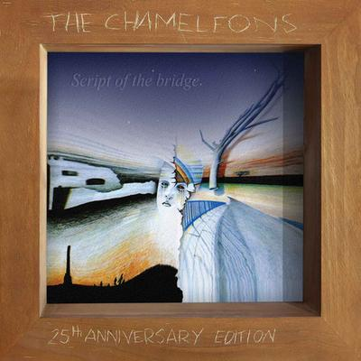 jaquettes3/The-Chameleons_25th-Anniversary-Edition.jpg