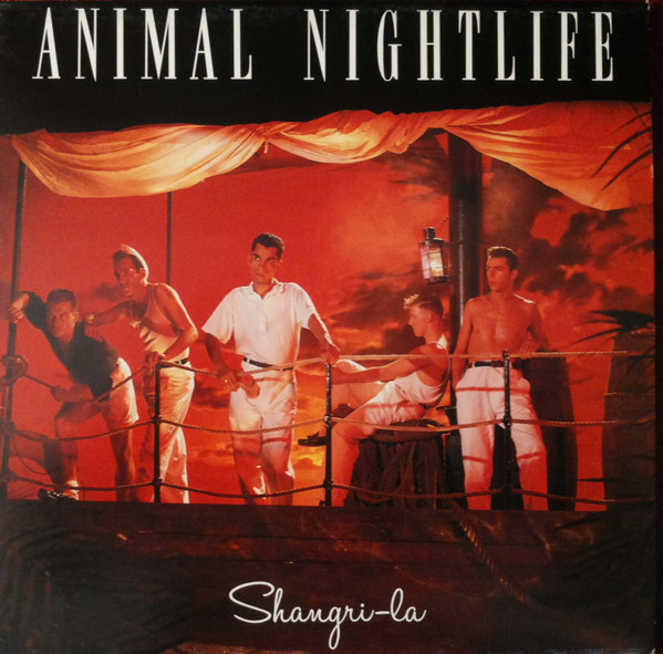 pochettes/Animal-Nightlife_Shangri-La.jpg
